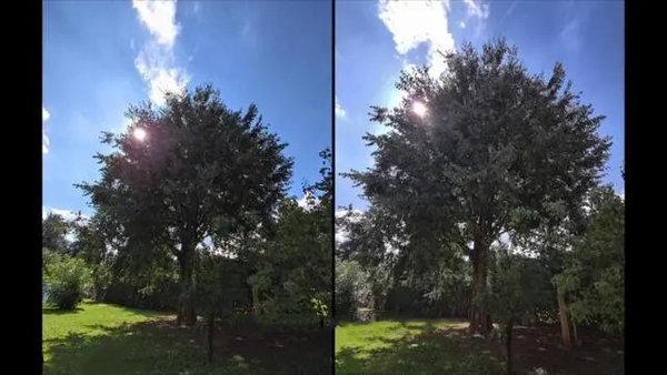 小米10至尊版和红米10pro拍照对比-拍照测评