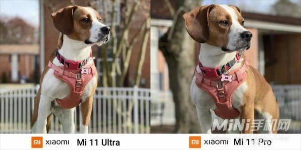小米11Ultra和小米11Pro拍照差多少-拍照对比