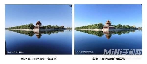 vivox70pro+有微距吗-支持微距拍照吗